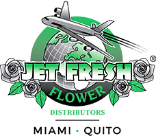 Jet Fresh Flowers Miami - Quito