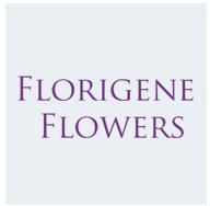 Florigene Flowers