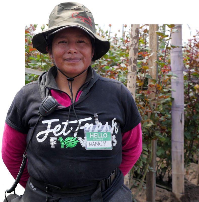 Nancy Harvest Manager