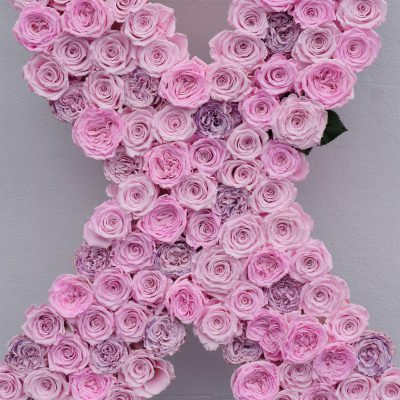 Jet Fresh Flowers Diy Preserved Rose Pink Ribbon For Breast Cancer