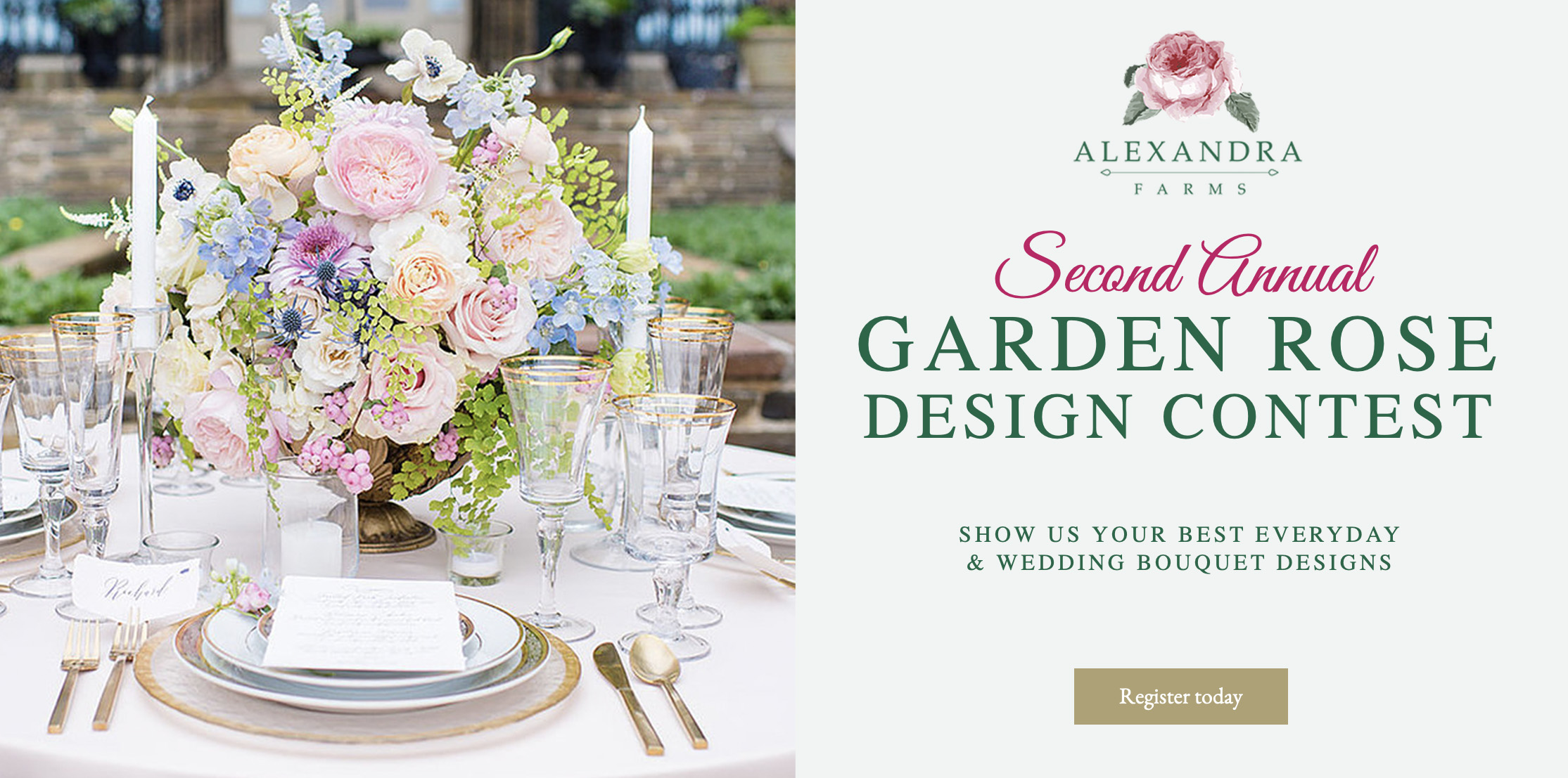 Alexandra Farms Second Annual Garden Rose Design Contest