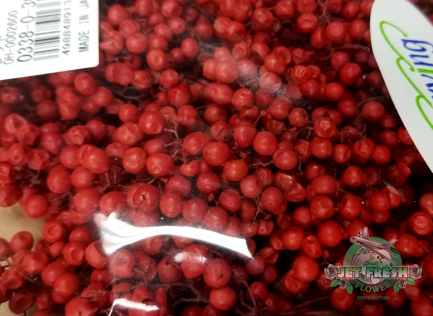 Preserved Red Berry Ball Stems