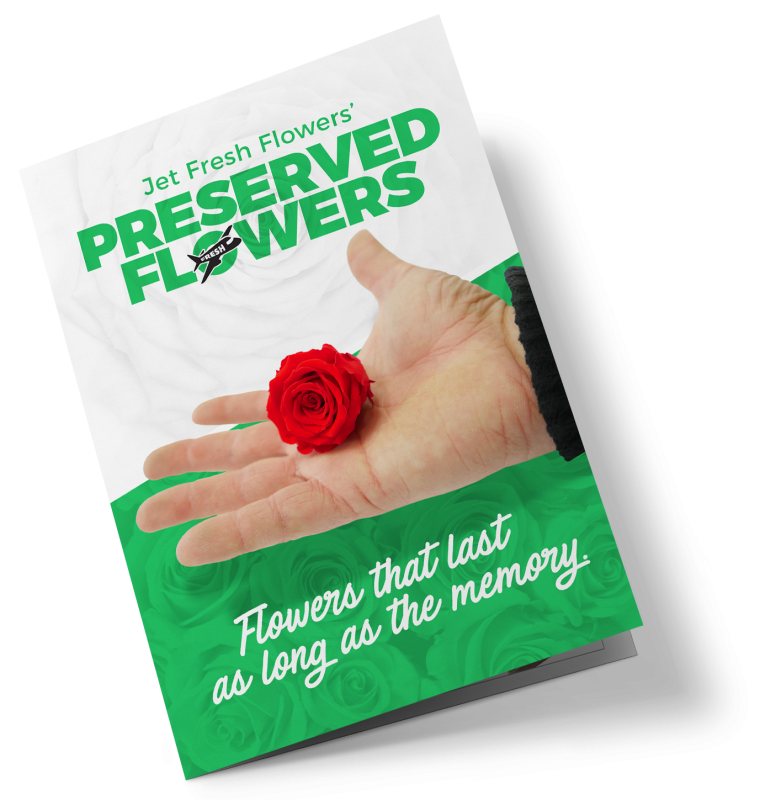 Preserved and Dried Flowers Brochure print