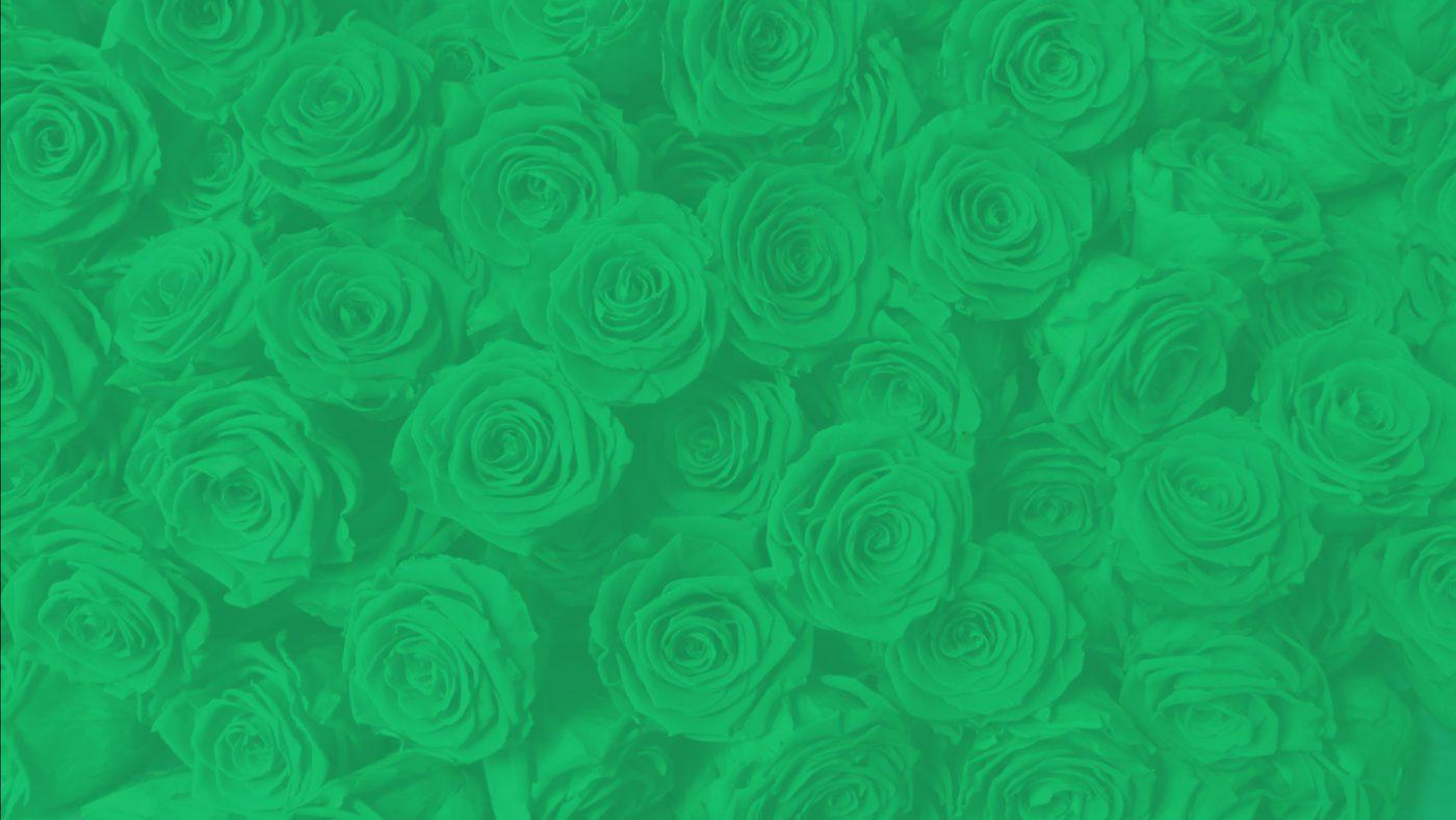 Download Preserved Roses Catalog