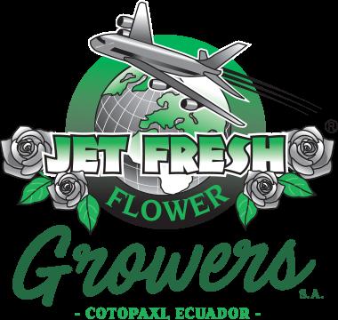 Growers Jet Fresh Flowers